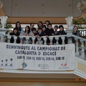 Finals Catalunya per Edats 2014 – Prèvia