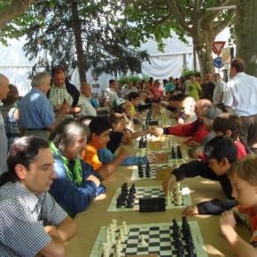 Festa Major La Seu d'Urgell 2013