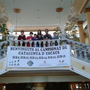Finals Catalunya per Edats 2014 – Crònica