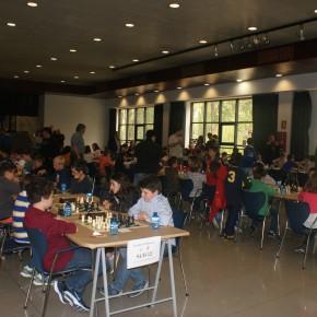 IX Torneig Escolar de La Massana – Bases