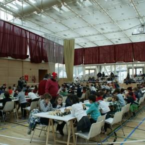 14è Festival Escolar de Nadal – Informació
