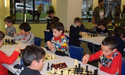 Escolar per Equips d'Andorra 2019 – Bases
